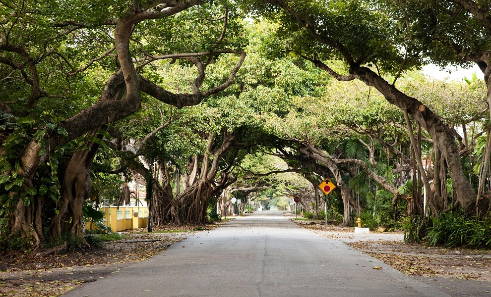 Biltmore Parc Condos For Sale In Coral Gables Fl 0